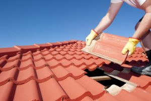 Roof Leak Repair Company in Arlington Heights, IL