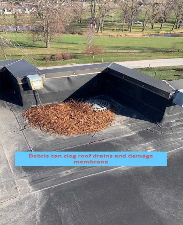 Debris Clogging Roof Drains