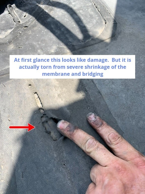 Flat Roof Blisters