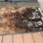 Repairing Damaged Roof
